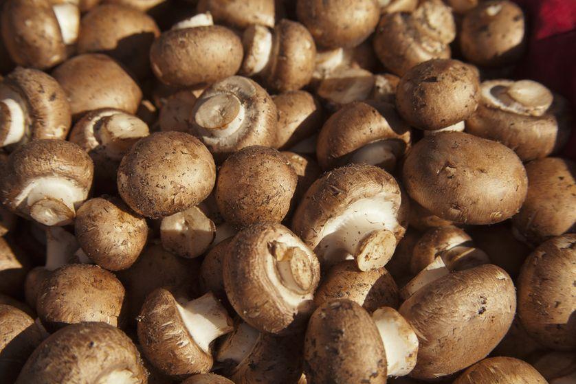 mushrooms-zinc